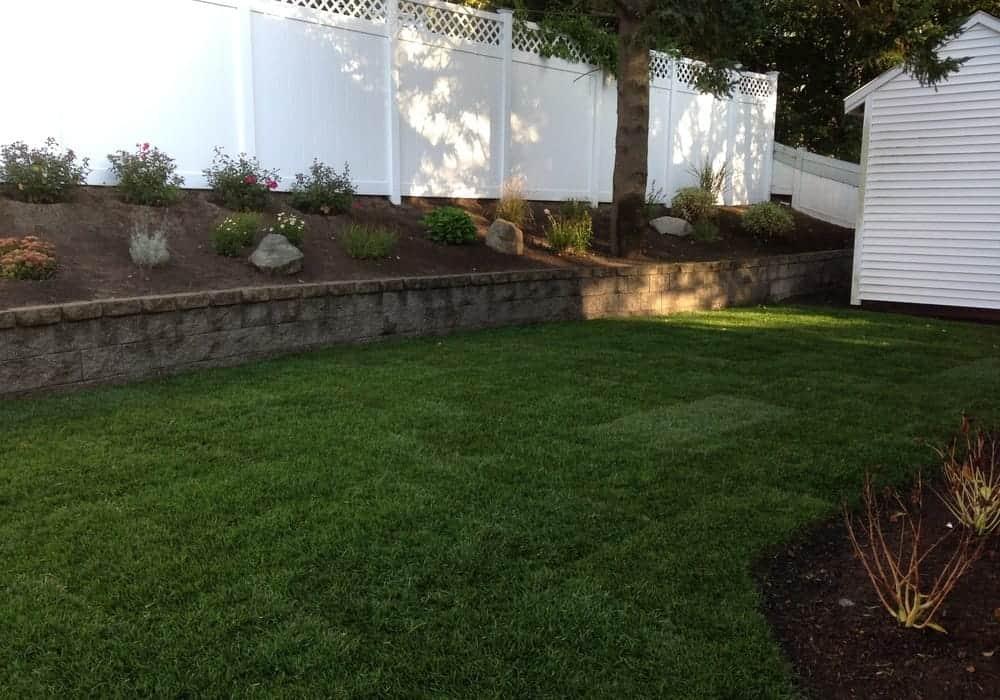 New Lawn Installs